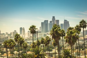 Los Angeles Apartment Renovations